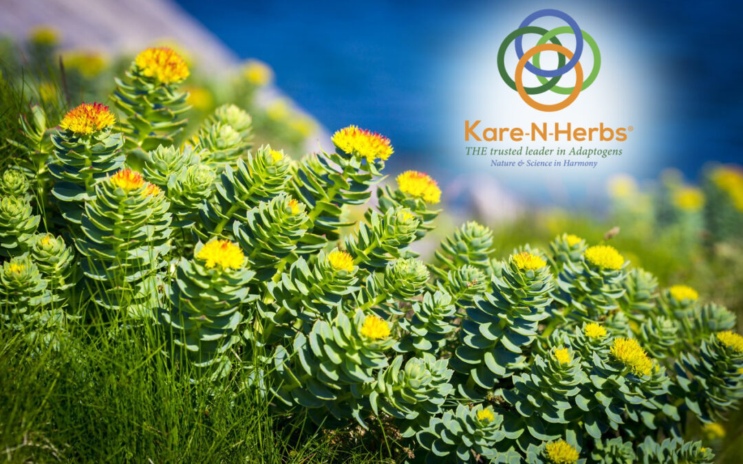 Our herbal extracts begin with the native herbs themselves.